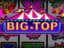 Игровой аппарат Big Top